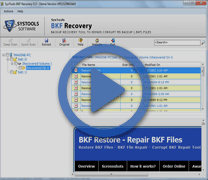 MS BKF Recovery